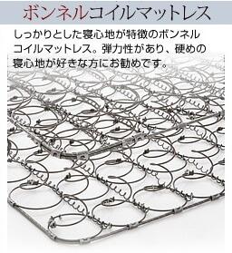 ボンネルコイル断面図写真