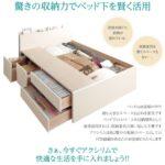 日本製_棚・コンセント付き_大容量チェストベッド【Auxilium】アクシリム
